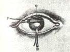 Gravat ull